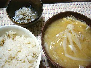 food111.jpg