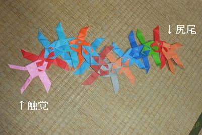origami06.jpg